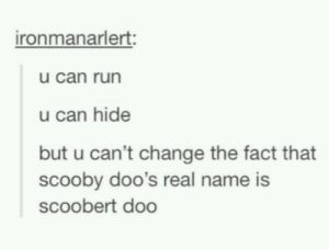 Run, Change, and Can: ironmanarlert:  u can run  u can hide  but u can't change the fact that  scooby doo's real name is  scoobert doo Dumparoo