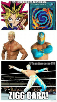 I love this, especially since I'm a Yu-Gi-Oh! fan. _An: IRUSE DOLPHZIGGLER AND SIN CARA  POLYMERIZATION  SPELL CARD  TeamAWesome418  ZIGG CARA!  E I love this, especially since I'm a Yu-Gi-Oh! fan. _An