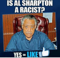 Al Sharpton, Memes, and Racist: IS AL SHARPTON  A RACIST  YES  LIKE Follow us for more at American Freedom