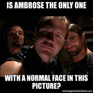 29 Hilarious WWE Memes | QuotesHumor.com: IS AMBROSE THE ONLY ONE  WITH A NORMAL FACE IN THIS  PICTURE?  memegeneokerlund.com 29 Hilarious WWE Memes | QuotesHumor.com