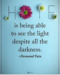 Memes, 🤖, and Light: is being able  to see the light  despite all the  darkness.  Desmond Tutu HOPE is being able to see the light despite all the darkness- Desmond Tutu powerofpositivity