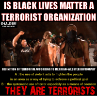 IS BLACK LIVES MATTER A  TERRORISTORGANIZATION  OAA ORG  DEFINITION OF TERRORISM ACCORDINGTO MERRIAM-WEBSTER DICTIONARY  A the use of violent acts to frighten the people  in an area as a way of trying to achieve a political goal  B the systematic use of terror especially as a means of coercion  THEY ARE TERRORISTS Are they terrorists? Is the Pope a Catholic?