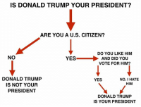 Memes, Preach, and Riot: IS DONALD TRUMP YOUR PRESIDENT?  ARE YOU A U.S. CITIZEN?  DO YOU LIKE HIM  NO  YES  AND DID YOU  VOTE FOR HIM?  DONALD TRUMP  YES  NO. I HATE  HIM  IS NOT YOUR  PRESIDENT  DONALD TRUMP  IS YOUR PRESIDENT And it was exactly the same when Obama was elected twice.  Like most elections, half the country wasn't happy about the election results.  And If memory serves, the Conservatives didn't riot and not show up at the inauguration.  Wouldn't it be nice if the Lefties actually practiced what they preached?  They scream for bipartisan actions, but it is only a one way street with them.