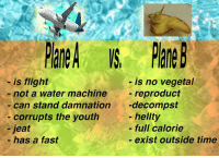 Flight, Time, and Water: - is flight  - not a water machine  - can stand damnation-decompst  - is no vegetal  - reproduct  - hellty  - full calorie  -exist outside time  corrupts the youth  -jeat  - has a fast <p>p̀la̢y̴ne</p>