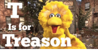 OK I would have pick an Orange Shitgibbon but Big Bird will do.: Is for  Treaso OK I would have pick an Orange Shitgibbon but Big Bird will do.