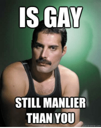 Gay Meme: IS GAY  STILL MANLIER  THAN YOU  quick meme com