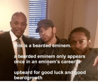 "Eminem, Memes, and Good: is is a bearded eminem.  bearded eminem only appears  once in an eminem's career!!!  upbeard for good luck and good  beardgrowth <p>Happy browsing via /r/memes <a href=""http://ift.tt/2D2auGK"">http://ift.tt/2D2auGK</a></p>"