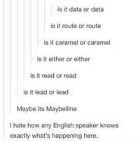 Funny, Memes, and Anxiety: is it data or data  is it route or route  is it caramel or caramel  is it either or either  is it read or read  is it lead or lead  Maybe its Maybelline  I hate how any English speaker knows  exactly what's happening here. clean cleanfunny cleanhilarious cleanposts cleanpictures cleanaccount funny funnyaccount funnypictures funnyposts funnyclean funnyhilarious anxiety