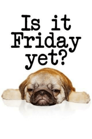 Friday, Funny, and Reality: Is it  Friday  yet? Reality