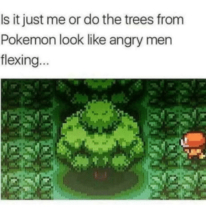 Pokemon, Fingering, and Trees: Is it just me or do the trees from  Pokemon look like angry men  flexing Im taking a dump right now and it feels like satan himself is fingering me
