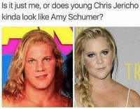 @drgrayfang is the ultimate savage page: Is it just me, or does young Chris Jericho  kinda look like Amy Schumer? @drgrayfang is the ultimate savage page
