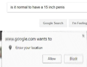 Dank, Google, and Memes: is it normal to have a 15 inch penis  I'm Feeling  Google Search  www.google.com wants to  Know your location  Allow Hot singles in your area by mohmirza2ooo FOLLOW 4 MORE MEMES.