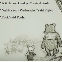 """Memes, Winnie the Pooh, and The Weekend: """"Is it the weekend yet?"""" asked Pooh.  """"Nah it's only Wednesday."""" said Piglet  """"Fuck"""" said Pooh. Today is Winnie the Pooh Day, one of the cuddliest holidays around. Follow @9gag @9gagmobile 9gag winniethepooh"""