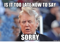 Sorry,  Say, and  Sayings: IS IT TOO  LATENOW TO SAY  SORRY  memes.co
