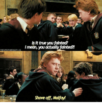 Memes, True, and Date: Is it true you fainted?  Imean, vou actually fainted!  TLELIREOF WEASLEYImean, you actually fainted?l  THELIFEOFAWEASLEYLIG  Shove off, Malfoyt - Date: 24-07-17 --- How To Be A Great Friend By Ron Weasley --- Q- Ron or Malfoy? --- HarryPotter ThePrisonerOfAzkaban