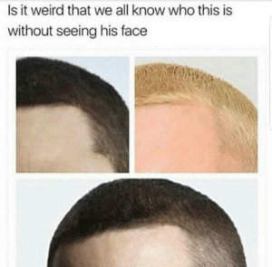 Memes, Weird, and Who: Is it weird that we all know who this is  without seeing his face This cant be anymore factual via /r/memes https://ift.tt/2Nz5n6b