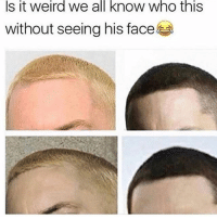 Memes, Weird, and 🤖: Is  it  weird  we  all  know  who  this  without seeing his face Do NOT follow @pissed if you get offended easily 🤬😂