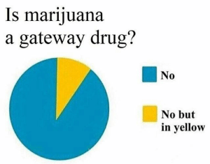 This is a lie! It definitely is a GATEWAY DRUG… to the fridge! 👆👇👆👇👆👇👆👇👆👇👆👇👆👇 #weed #marijuana #trichomes #cookies #420 #haze #kush #igers #hazeporn #thc #hightimes #stoner #indica #sativa #187 #cannabis #lifestyle #motivation #weedporn #amazing #weedgram #awesome #budporn #picoftheday #hashporn #instagood #psicodelicavibe #psychedelic #psychedelics #psychedelicart https://ift.tt/2rjagHs: Is marijuana  a gateway drug?  No  No but  in yellow This is a lie! It definitely is a GATEWAY DRUG… to the fridge! 👆👇👆👇👆👇👆👇👆👇👆👇👆👇 #weed #marijuana #trichomes #cookies #420 #haze #kush #igers #hazeporn #thc #hightimes #stoner #indica #sativa #187 #cannabis #lifestyle #motivation #weedporn #amazing #weedgram #awesome #budporn #picoftheday #hashporn #instagood #psicodelicavibe #psychedelic #psychedelics #psychedelicart https://ift.tt/2rjagHs