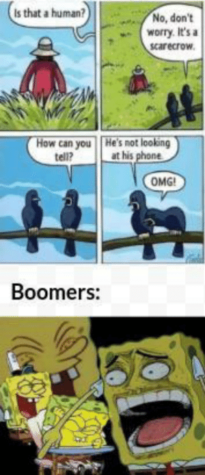 Boomers are old people: Is that a human?  No, don't  worry. It's a  scarecrow.  How can you  tell?  He's not looking  at his phone  OMG!  Boomers: Boomers are old people