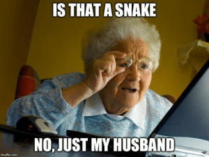 Imágenes de Internet Husband Meme Imgflip: IS THAT A SNAKE  NO, JUST MY HUSBAND  imgflip.com Imágenes de Internet Husband Meme Imgflip