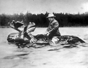 Is this a real picture? [Teddy Roosevelt + moose]: Is this a real picture? [Teddy Roosevelt + moose]