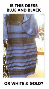Dank, 🤖, and Answers: IS THIS DRESS  BLUE AND BLACK  OR WHITE & GOLD? What's your final answer?