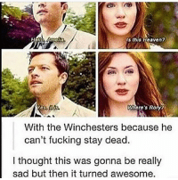 Fucking, Memes, and Awesome: Is this Haavon?  Wmoto's Rory?  With the Winchesters because he  can't fucking stay dead.  I thought this was gonna be really  sad but then it turned awesome.