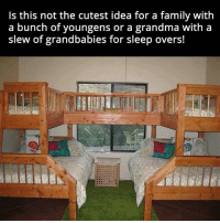 Slew: Is this not the cutest idea for a family with  a bunch of youngens or a grandma with a  slew of grandbabies for sleep overs!