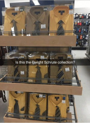 identity theft is not a joke Jim: Is this the Dwight Schrute collection? identity theft is not a joke Jim