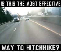 Memes, 🤖, and Hitchhike: IS THIS THE MOST EFFECTIVE  WAY TO HITCHHIKE? Share and let 'em know!