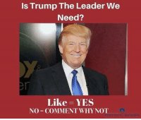 Memes, 🤖, and Why Not: Is Trump The Leader We  Need?  Like YES  NO COMMENT WHY NOT  INSIDER Follow us for more at American Freedom
