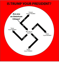American, Cool, and Trump: IS TRUMP YOUR PRESIDENT?  Trump is  not your President  Are you  an American  Citizen?  Trump  is your President  Who did you  vote for?  Trump  is your President  Trump  is your President <p>Cool flowchart that shows whether Trump is your president</p>