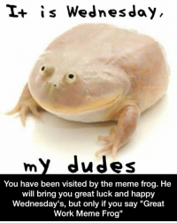 """Meirl: is Wednesday  my dudes  You have been visited by the meme frog. He  will bring you great luck and happy  Wednesday's, but only if you say """"Great  Work Meme Frog"""" Meirl"""