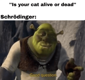 Alive, Memes, and Tumblr: Is your cat alive or dead  Schrödinger:  Good question 30-minute-memes:  Hmmmmm