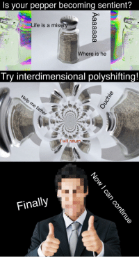 "<p>[<a href=""https://www.reddit.com/r/surrealmemes/comments/7kr590/there_is_a_solution/"">Src</a>]</p>: Is your pepper becoming sentient?  Life is a mise  Where is he  Try interdimensional polyshifting!  Iwill return  Finally <p>[<a href=""https://www.reddit.com/r/surrealmemes/comments/7kr590/there_is_a_solution/"">Src</a>]</p>"