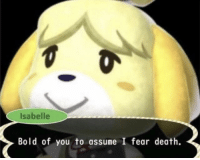 Death, Bold, and Fear: Isabelle  Bold of you to assume I fear death. Socrates Defending Himself In the Court Of Athens (399 BC)