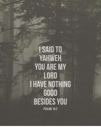 Blessed, Friends, and God: ISAID TO  YAHWEH  YOU ARE MY  LORD  IHAVE NOTHING  GOOD  BESIDES YOU  PSALMS 16:2 👉 follow @full_of_glory 👈 👑God bless praise the Lord he likes to be Glorified 📣✨ AMEN 🙏🏻 ( 👉🏻Share with you friends 👈🏻) God Jesus HolySpirit Jehova Lord Christ Bless memes sunday Somebody churchmemes memehistory Life Love My Yes Blessed instagood Bible GodBlessYou me Amazing mercy tbt You I live )