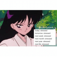 Sailor Moon Texts 🌙 @isailorgalaxia sailormoon sailormooncrystal reihino sailormars funny textpost text cute follow new tumblr blog anime manga usagitsukino friends stressed meme like moonie: @isailorgalaxia  today: stressed  tomorrow: stressed  next week: stressed  next month: stressed  next year stressed  next life stressed Sailor Moon Texts 🌙 @isailorgalaxia sailormoon sailormooncrystal reihino sailormars funny textpost text cute follow new tumblr blog anime manga usagitsukino friends stressed meme like moonie