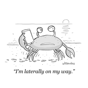 "On My Way, My Way, and Someone: iSAn No  ""Tm laterally on my way."" [OC] Someones crabby"