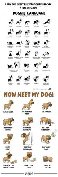 "epicjohndoe:  Now Meet My Dog: ISAW THIS GREAT ILLUSTRATION BY LILI CHIN  A FEW DAYS AGO  DOGGIE LANGUAGE  starring Boogie the Boston Terrier  ALERT  ANXIOUS  THREATENED  ANGRY  PEACE!  look away head turn  STRESSED  STRESSED  nose ick  PEACEI  snift ground  RESPECT  NEED SPACE STALKING  STRESSED  seratehing  STRESS RELEASE  shake off  RELAXED  soft ears, blinky eye  whale eye  RESPECTI  FRIENDLY & POLITE FRIENDLY  ""PRETTY PLEASE.  round puppy face  ㄲ녜 YOUR LOVEBUG""  belly rub pose  curved bedy  HELLO ILOVE YoUr  greeting stretch  TM FRIENDLY!·  play bow  READY  prey bow  YOU VWILL FEED ME  CURIOUS  head tit  HAPPY  or hot)  OVERIOYED  wiggly  ILOVE YOU  DON'T STOP  © 201  ain www doggiedowingsret  NOW MEET MY DOG  IT'S DEFINITELY  FOOD  IS THAT FOOD?  I'M STARVING  FEED ME NOW  HUMAN!  IT LOOKS So  DAMN TASTY  DID I JUST  MADE FOOD?  NOPE!  I DIDN'T  DROP THAT  FOOD HUMAN!  THAT'S NOT  FOOD  ISHOULDN'TEAT  HUMAN'S FOOD  IDON'T EVEN  CARE!  IMUST ACT  LIKE I DO epicjohndoe:  Now Meet My Dog"