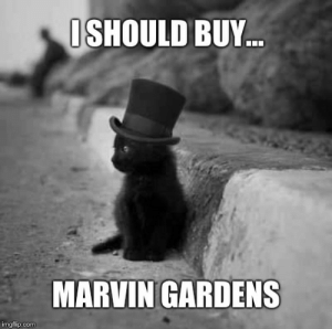 Monopoly, Cat, and Com: ISHOULD BUY...  MARVIN GARDENS  imgflip.com Monopoly Cat
