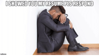 Tumblr, Blog, and Gifs: ISHOWED YOUMY RESUME PLS RESPOND punchymemeboi: