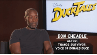 Tumblr, Survivor, and Blog: ISNE  DON CHEADLE  ACTOR.  THANOS SURVIVOR,  VOICE OF DONALD DUCK thegoldensoundtwice:  thestomping-ground: They went there @willzgirl