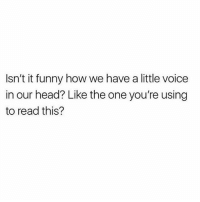 Funny, Head, and Memes: Isn't it funny how we have a little voice  in our head? Like the one you're using  to read this? Wut 😳 Rp my Hun @scousebarbiex @scousebarbiex @scousebarbiex goodgirlwithbadthoughts 💅🏼