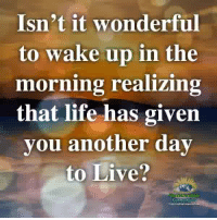 Life, Memes, and Live: Isn't it wonderful  to wake up in the  moring realizing  that life has given  you another dav  to Live?  aderstanming Understanding Compassion ❤️