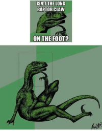 Memes, Http, and Foot: ISN'T THE LONG  RAPTOR CLAW  ON THE FOOT? Das foot via /r/memes http://bit.ly/2smBoGk