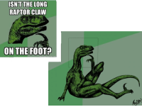 The truth about philosoraptor revealed: ISNT THE LONG  RAPTOR CLAW  ON THE FOOT The truth about philosoraptor revealed