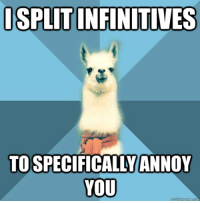 "Meme, Blue, and Text: ISPLIT INFINITIVES  TO SPECIFICALLYANNOY  YOU <p><strong>To boldly split what no man has split before</strong></p> <p>[Picture: Background: 8-piece pie-style color split with alternating shades of blue. Foreground: Linguist Llama meme, a white llama facing forward, wearing a red scarf. Top text: ""I split infinitives"" Bottom text: ""to specifically annoy you.""]</p>"