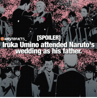 Memes, 🤖, and Following: ISPOILERI  NARUTO  Iruka Umino attended Naruto s Right in the feels ❤ | Minato or Iruka, who's your favorite? 😜 | follow @marvelousfacts