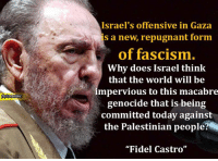"""Memes, Israel, and Cuban: Israel's offensive in Gaza  s a new, repugnant form  of fascism.  Why does Israel think  that the world will be  impervious to this macabre  genocide that is being  committed today against  the Palestinian people  """"Fidel Castro"""" #FidelCastro, the revolutionary Cuban leader was one of the biggest supporters of #Palestine has passed away at the age of 90 years. #RIP"""